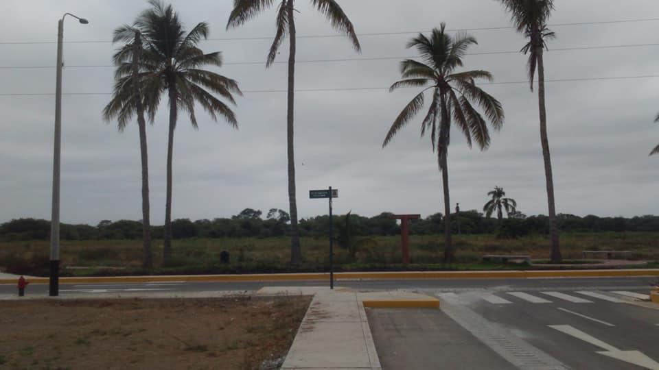 Terreno en Las Palmeras 140 mt2, A1, Lote 54