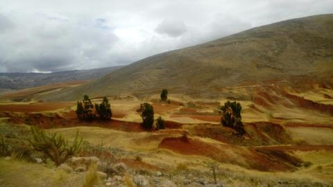 Se Vende Tierras Agricolas (tierra Roja)