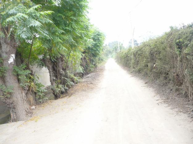 Terreno agrícola en producción en La Esperanza Alta