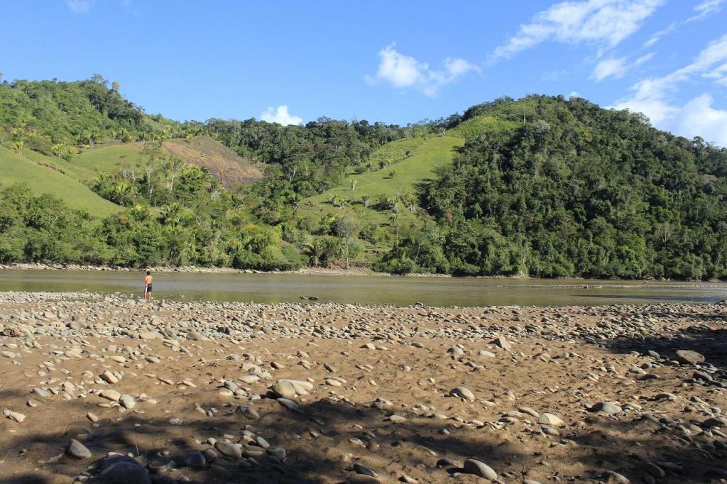 Terreno para invertir en cacao