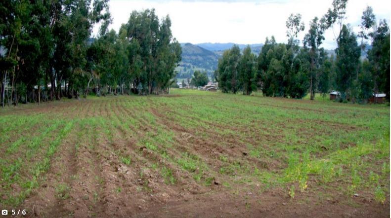Hermoso Terreno Panoramico Pampa  1000m2